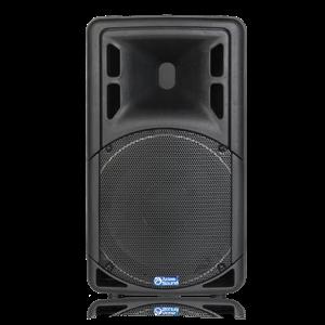 "Picture of 12"" 2-Way Passive Portable Loudspeaker"